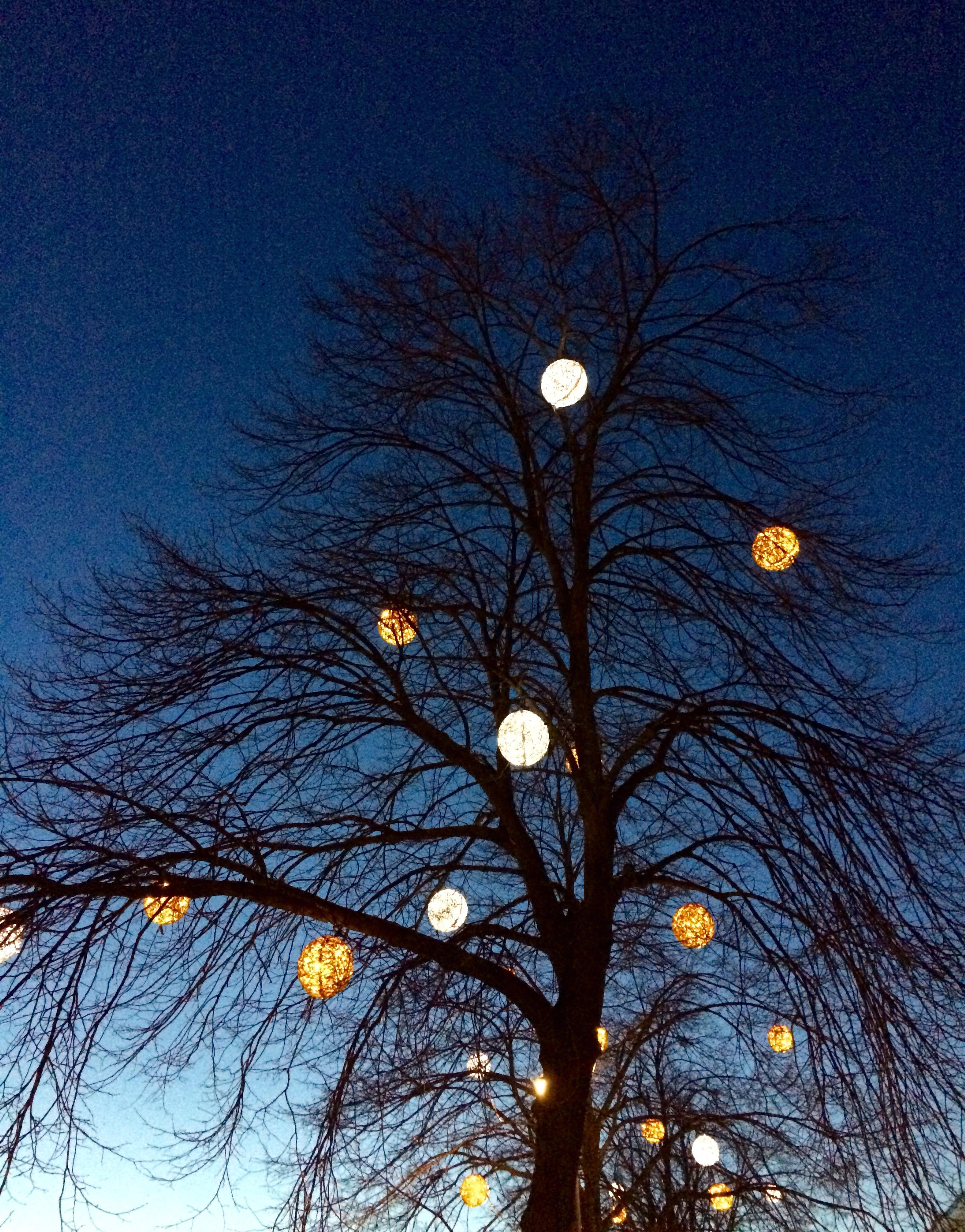 Vilka fina ljusbollar i trädet.